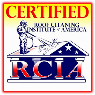 We Have To Keep Up On All The Latest In Roof Cleaning Thought. Still Think Roof  Cleaning In Tampa Is Just A Cosmetic Issue ?