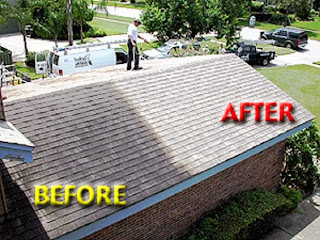 Some Of The Black Or Very Dark Roof Stains Are Caused By A Resilient Type  Of Algae, Gloeocapsa Magma (a Type Of Blue Green Algae ...