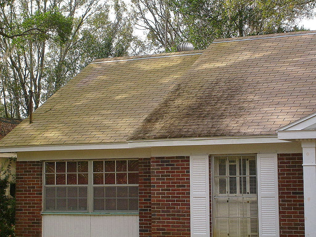 Perfect Apple Roof Cleaning Tampa Florida 813 655 8777