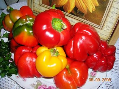 Articole culinare : Assorti de legume ,ca la Moldova
