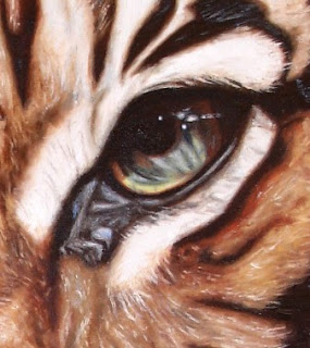 Eyes of the Tigers 4