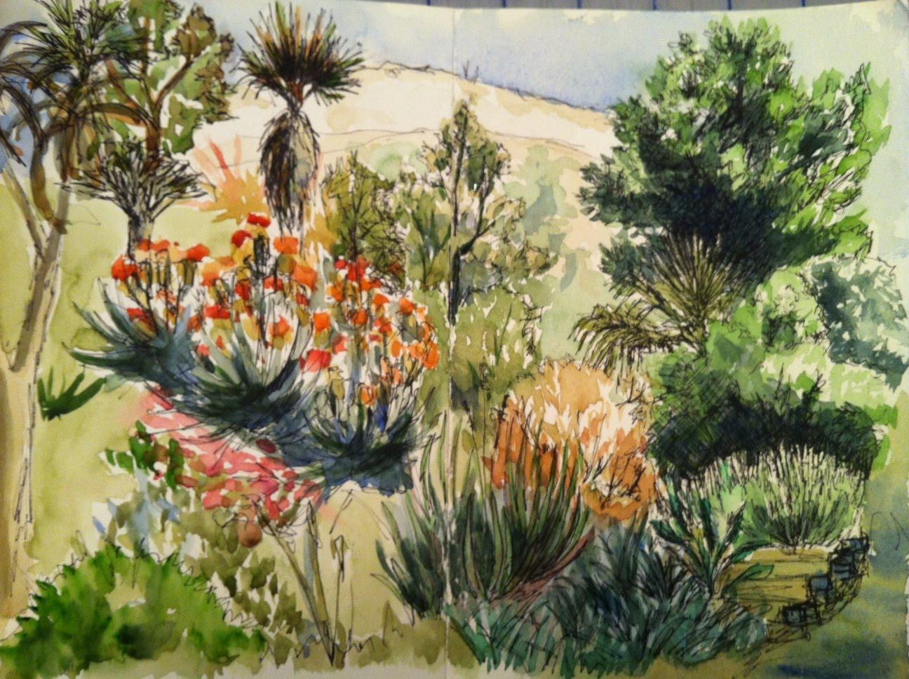 Sketching In Nature Ucr Botanical Gardens