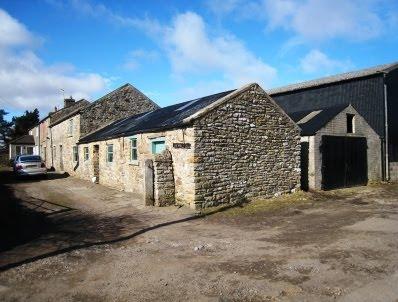 Bell Brook Farm