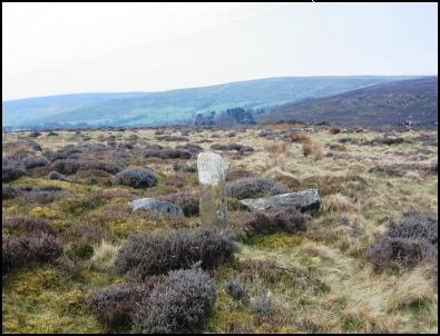 Boundary Stones near High Castleton Car Park
