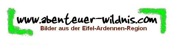 www.abenteuer-wildnis.com