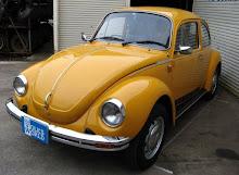 1975 Jeans beetle Japan