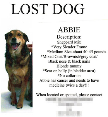 printable lost dog flyers
