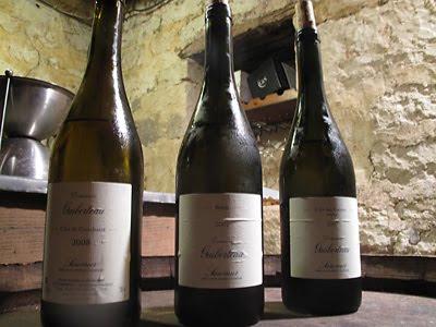 Guiberteau cellar