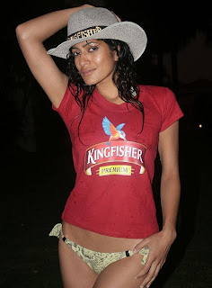 Kingfisher Calendar