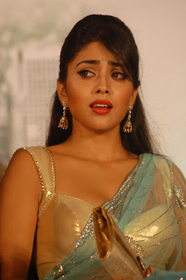 Shriya Sharan photo