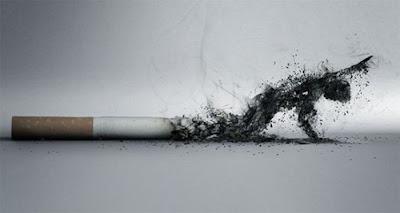 this is anti-smoking ads.