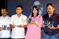 Shruti Mehrotra Album Launch