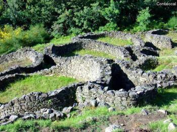 Castro de Troña(Pias)