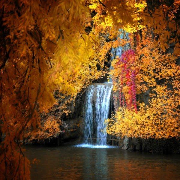 http://3.bp.blogspot.com/_JVXqJ8QkmJA/Sp2V6_f06nI/AAAAAAAASfc/jXcbsqJENX8/s1600/63_philippe-sainte-laudy.jpg