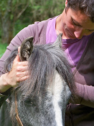 osteopathie equine