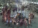 Comida a lo criollo en Pedraza-Barinas