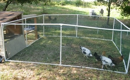 Homemade pvc chicken run loomis living for Pvc chicken tractor plans