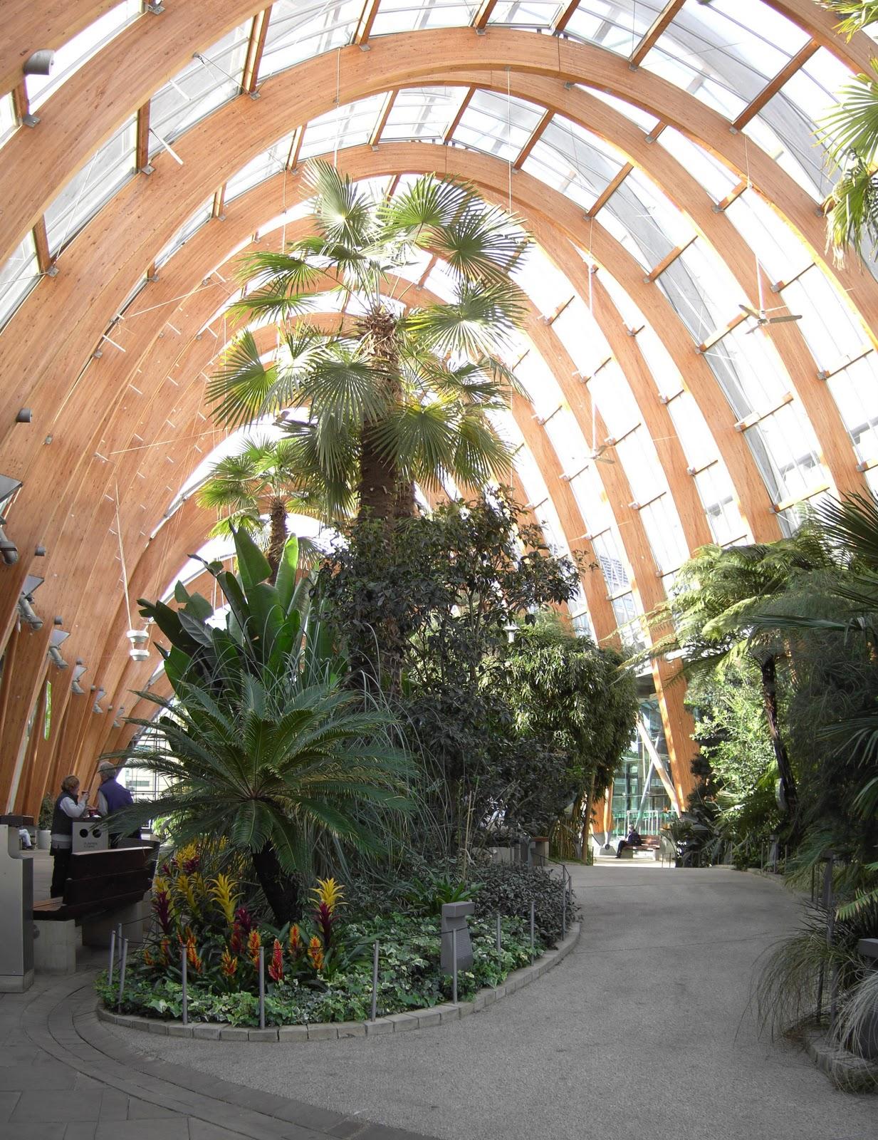 http://3.bp.blogspot.com/_JYdx4QpM8_Q/TKuH4dL1QtI/AAAAAAAAAbM/Suwj-BuOTbY/s1600/Sheffield_Winter_Garden.jpg