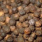 allspice