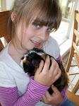 Ema and Munchie our guinie pig