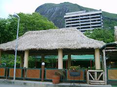 Uma casinha de sapê