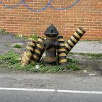 Chain Gang Hydrant Guards - On 30th Place near the LIE in Queens.