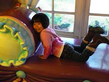 Disneyland Dec. 2009