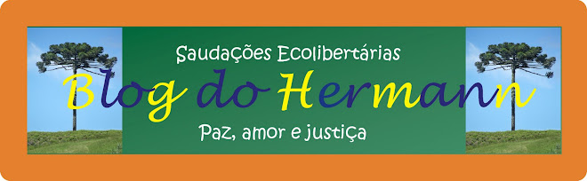 Blog do Hermann