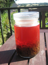 blood red hypericum/st. john's wort  oil