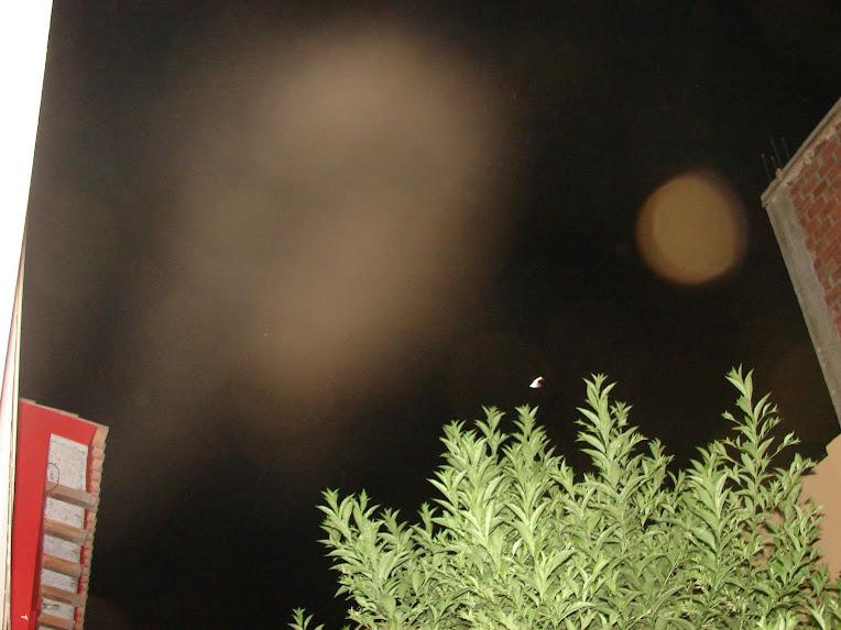 Ultimo Avistamiento Ovni 26/enero/2010 sec Holograma d formas Nibiru 27/1/2010
