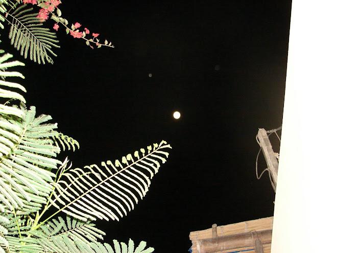 Ultimo Avistamiento y Alineacion Lunar 29/enero/2010