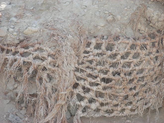 19-18 febrero-2010,visita a VICHAMA Vegueta,Arqueologia,Turismo Mistico Interdimensional,x Fito.33.