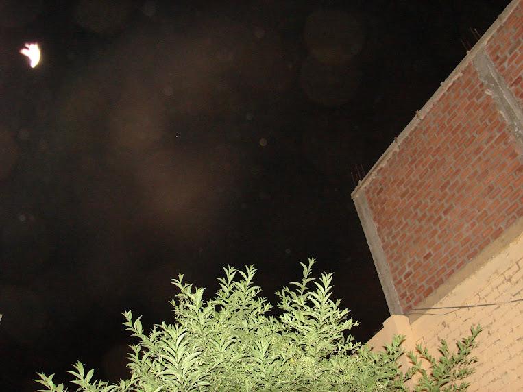 12-13 febrero,Ultimo Avistamiento,ayer hrs:9:33pm,sec,''PALOMA LUZ'' reta a  Alien,x Rodolfo Trujil