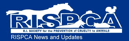 RISPCA News and Updates