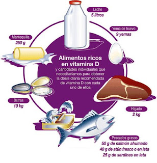 Alimentos ricos en calcio para adultos