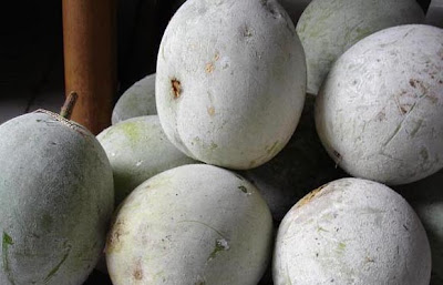healthy gourd fruit benefits
