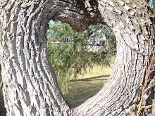 Naturens hjärta...