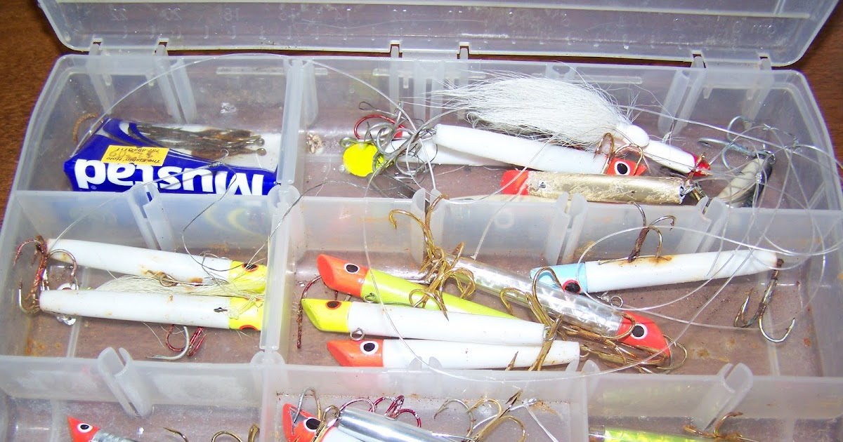 Surf Fishing for Beginners: My Favorite Saltwater Lure