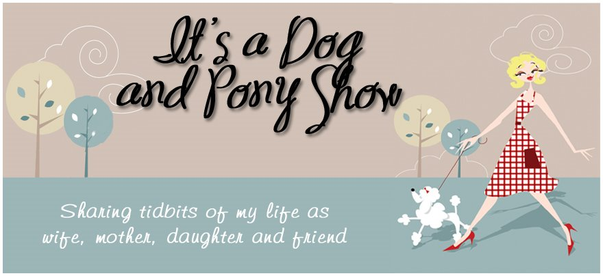 It&#39;s a Dog and Pony Show....