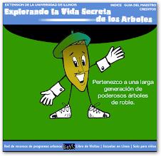 EXPLORANDO LA VIDA SECRETA DE LOS ÁRBOLES