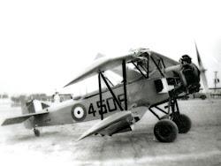 Finch 4508