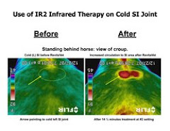Infrared Image of SL Joint