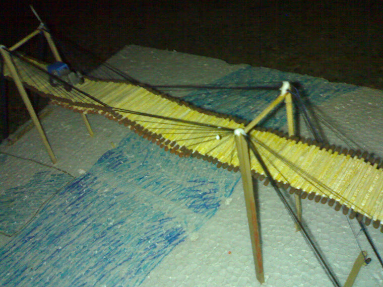 homemade suspension bridge 4