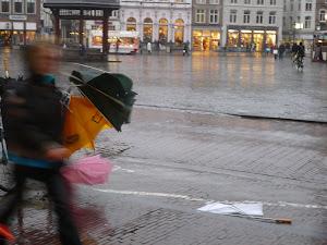 's-Hertogenbosch storm en regen