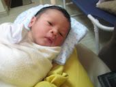 28 January 2011