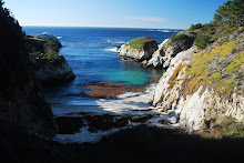 Monterey, Point Lobos