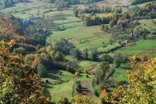 Dealurile de pe langa Poieni