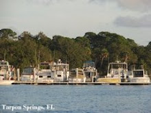 Tarpon Springs, FL