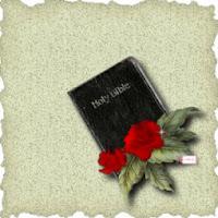 Bible ecg