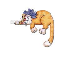 Cat Topper ecg